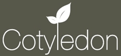 Cotyledon Business and Management CIC